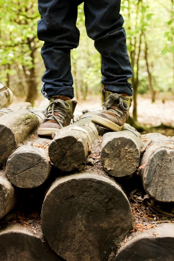 Child standing on logs
